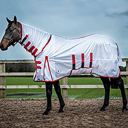 Derby House Classic Fly Rug 2
