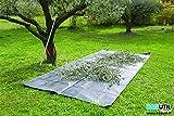 BAGUTIL Bâche de ramassage, Taille de Haies, Branches et déchets Verts, 2m x 3,4m avec 4 poignées par So Bag France