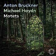 Anton Bruckner & Michael Haydn: Mo