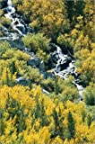 Poster 80 x 120 cm: Wasserfall und Herbstlaub im Oktober von Rich Reid/National Geographic - Hochwertiger Kunstdruck, Neues Kunstposter