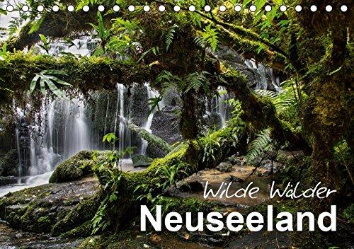 Neuseeland - Wilde Wälder (Tischkalender 2019 DIN A5 quer): Tauchen Sie ein in die Urwälder Neuseelands! (Monatskalender, 14 Seiten ) (CALVENDO Natur)