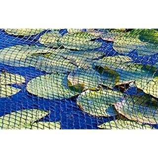 All Pond Solutions Abdeckung Net, 3 x 4 m