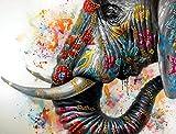 Kunst & Ambiente - Elephant on Holi Festival – Buntes Tierbild – Martin Klein – Elefantenbild - Elefant Wandbild - Tier Leinwand - Tierbild - Wandbild