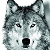 Ambiente Papierservietten - Servietten Lunch / Party ca. 33x33cm Wolf - Ideal Als Geschenk Und Tisch-Deko