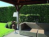 Velleman lamph10m 150cm Design Lampada da esterno terrazza, colore: bianco