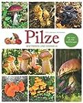 Pilze - Bestimmen und Sammeln: Mit me...