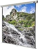 Celexon Rollo-Leinwand Professional, Format 1:1, Nutzfläche 220 x 220 cm, Full-HD und 3D
