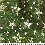 Organza-Metallic-Druck, Weihnachtsmotiv, grün/gold, 150 cm