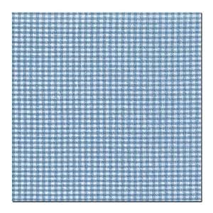 CorpoMed maxi housse de coussin bleu/carreaux