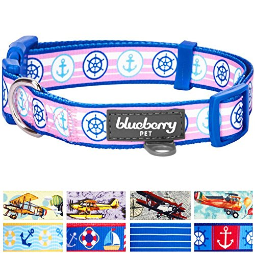 Blueberry Pet Bon Voyage Collection Designer Dog Collar with Nautical Anchors