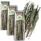 Original Italienischer Bio Rosmarin an Zweigen aus Sizilien Rosmarinzweige getrocknet 3x 25G (ideal auch für Präsentkörbe)