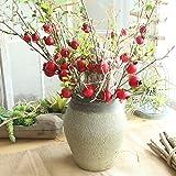 AmyGline gefälschte Blume Künstliche Deko Blumen Rose Blume Obst Granatapfel Beeren Bouquet Garten Wohnkultur