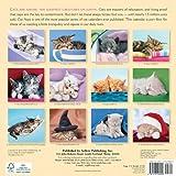 Image de Cat Naps 2015 Calendar