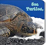 Sea Turtles, What Do You Do? (Rourke Board Books) by Holly Karapetkova (2011-09-09)