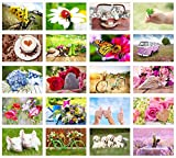 Set 40 exklusive Premium Geburtstagskarten mit Umschlag (Blanko ohne Text / 2x20 Karten). Glückwunschkarte Grusskarte zum Geburtstag. Geburtstagskarte Mann Frau Karten Billet Happy Birthday