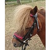 netproshop Englisch Leder Trense Zaumzeug mit Anti-Rutsch-Zügel Mini Shetty/Shetty Auswahl, Groesse:Shetty, Farbe:Rot