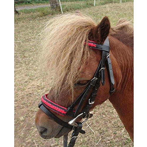 netproshop Englisch Leder Trense Zaumzeug mit Anti-Rutsch-Zügel Mini Shetty/Shetty Auswahl, Groesse:Mini Shetty, Farbe:Rot