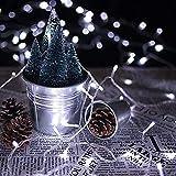 600 LEDs 60M Blanc Froid LED Fée Lights De Noël Fée Lights 31V String Fée En Plein Air Lights pour Xmas Halloween Jardin Intérieur Et Extérieur
