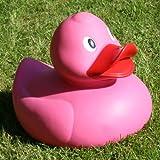 Ente XXL pink(Länge 32cm)