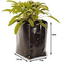 Unique Plastic Industries Plastic Poly Grow Bag (Black, 25-Pieces, GB5X6FLAT25)