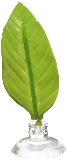 zoomed floating betta bed leaf hammock zoomed floating betta bed leaf hammock  amazon co uk  pet supplies  rh   amazon co uk