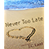 Never Too Late (English Edition)