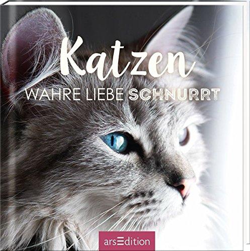 Katzen: Wahre Liebe schnurrt