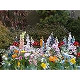 Colchoneta de flores (30 variedades y 2500 semillas)