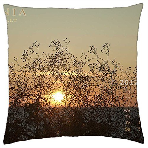a-fan-of-sand-flowers-for-sun-throw-pillow-cover-case-18