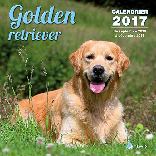Calendrier golden retriever