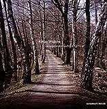 Songtexte von Robag Wruhme - Wuppdeckmischmampflow