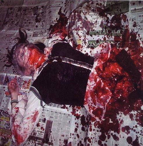 Molestation / Limb ER Split by Molestation / Limb ER (2009-05-04) -