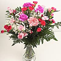 Pink Carnation Fresh Flower Bouquet - Delivered in 1hr TimeSlot - Send Flowers UK with Free Next Day Delivery - Pretty Bunch of Flowers for Birthday, Thank You or Thinking of You Gift