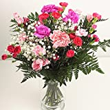Pink Carnation Fresh Flower Bouquet - Pretty Bunch of Flowers for Birthday, Thank You or Thinking of You Gift