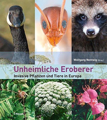 Unheimliche Eroberer: Invasive Pflanzen und Tiere in Europa