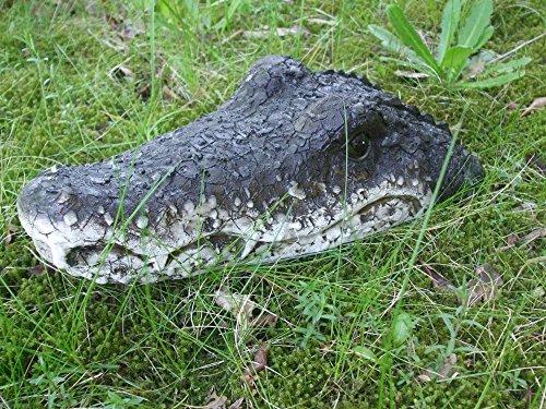 Krokodil Kopf (Schwimmtier Krokodil, Teichschreck, Gartenteichdekoration, 32 cm)