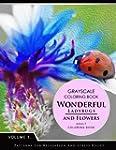 Wonderful Ladybugs and Flowers Book 1...