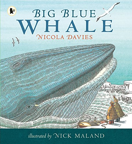 Big Blue Whale (Nature Storybooks)