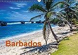 Barbados (Wandkalender 2019 DIN A3 quer): Bilder aus dem Urlaubsparadies Barbados in der Karibik (Monatskalender, 14 Seiten ) (CALVENDO Orte) - CALVENDO