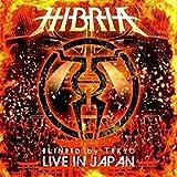 Live Heavy metal