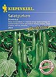 Salatgurken Gewächshaus Schlangengurke Dominica F1 resistent -