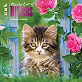 Kittens, for the Love of 2018 Mini Wall Calendar