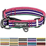 Blueberry Pet 3M Reflective Multi-colored Stripe Pink Emerald and Orchid Dog Collar, Neck 37cm-50cm, Medium, Collars for Dogs, Matching Lead & Harness Available Separately