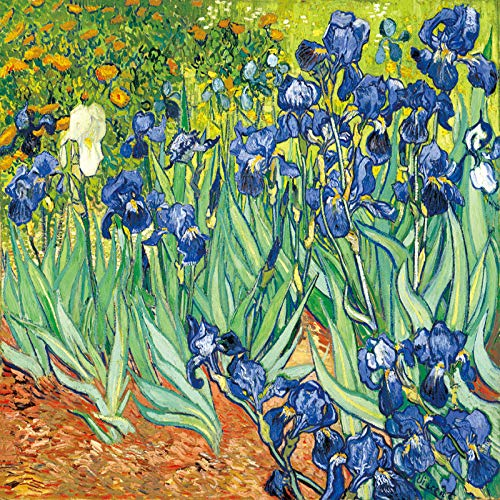 zlhcich Starry Aprikosenblumenernte Wohnzimmer dekorative Malerei Kern 4 60x80 horizontale Version - Einziges Vier-poster-bett