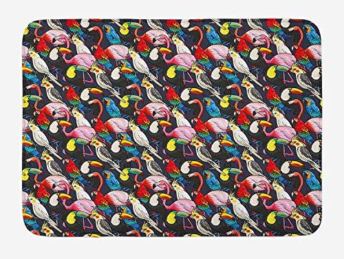 tgyew Animal Bath Mat, Colorful Exotic Birds Cockatoo Flamingo Macaw Parrot Toucan Tropic Wildlife Artwork, Plush Bathroom Decor Mat with Non Slip Backing, 23.6 W X 15.7 W Inches, Multicolor -