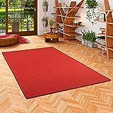 Astra Sisal Natur Teppich Rot in 24 Größen