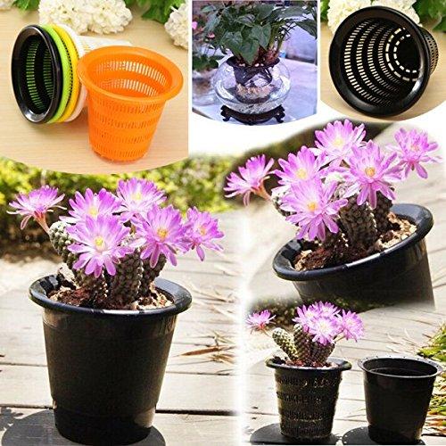 coeus-resina-multicolore-controllo-radice-fioriere-vasi-dimpianto-fuori-suolo-di-coltura-idroponica