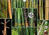 BAMBUS (Wandkalender 2019 DIN A4 quer): Bambus in verschiedenen Variationen (Geburtstagskalender, 14 Seiten ) (CALVENDO Natur)