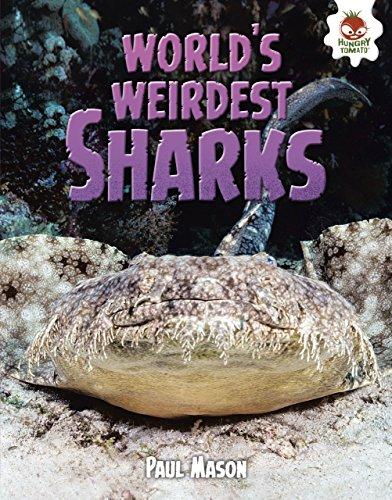 World's Weirdest Sharks (Wild World of Sharks) (English Edition)