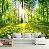BZDHWWH Foto Wallpaper 3D Wald Sonnenschein Natur Landschaft Wandbild Wohnzimmer Schlafzimmer Fernseher Sofa Hintergrund Wandverkleidung Murales De Pared 3D, 180 Cm (H) X 270 Cm (W)